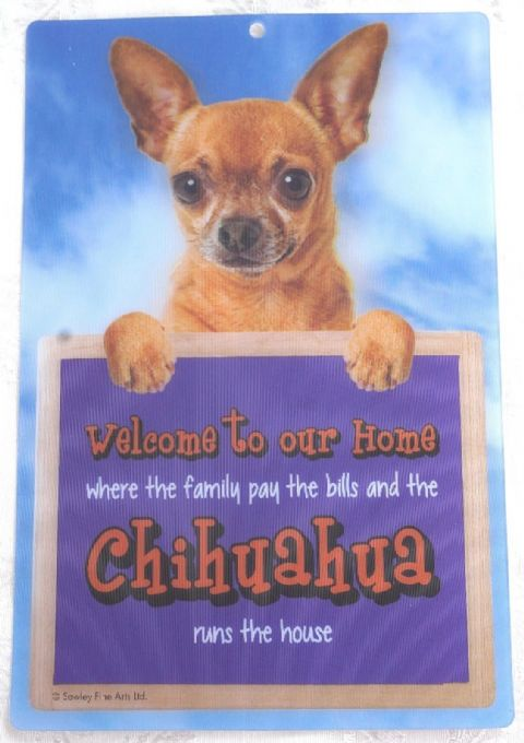 CHIHUAHUA SHORT HAIR 3D DOG WELCOME SIGN STUNNING EYE CATCHING 23CM X 15CM SIGN